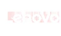 Winnipeg Lenovo Partner